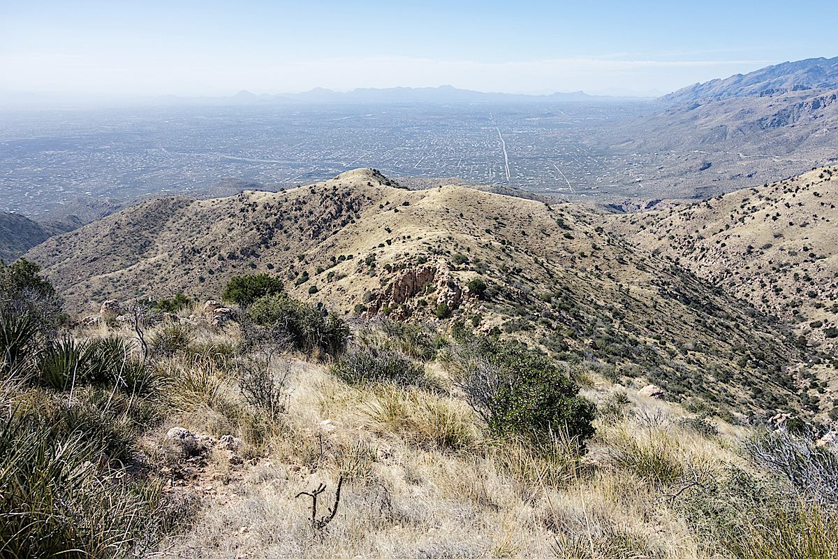 Looking down from Agua Caliente Hill. February 2015.