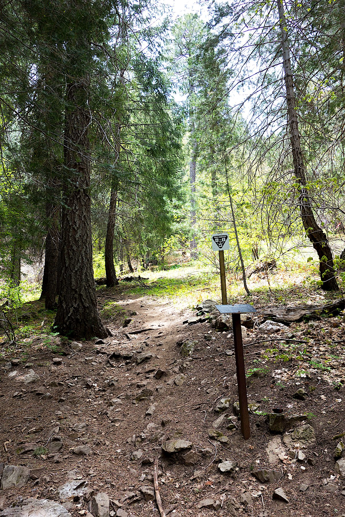 Trail sign at the junction for the trail to Ski Run Road. May 2014.