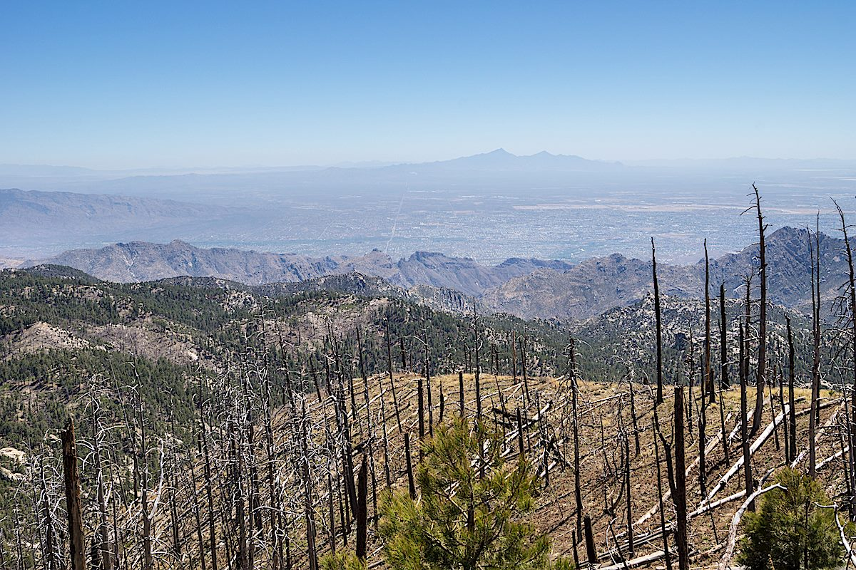 A great view of the ridges above Bear and Sabino Canyon - Gibbon Mountain, Thimble Peak, Saddleback and Blackett's Ridge are all visible! April 2014