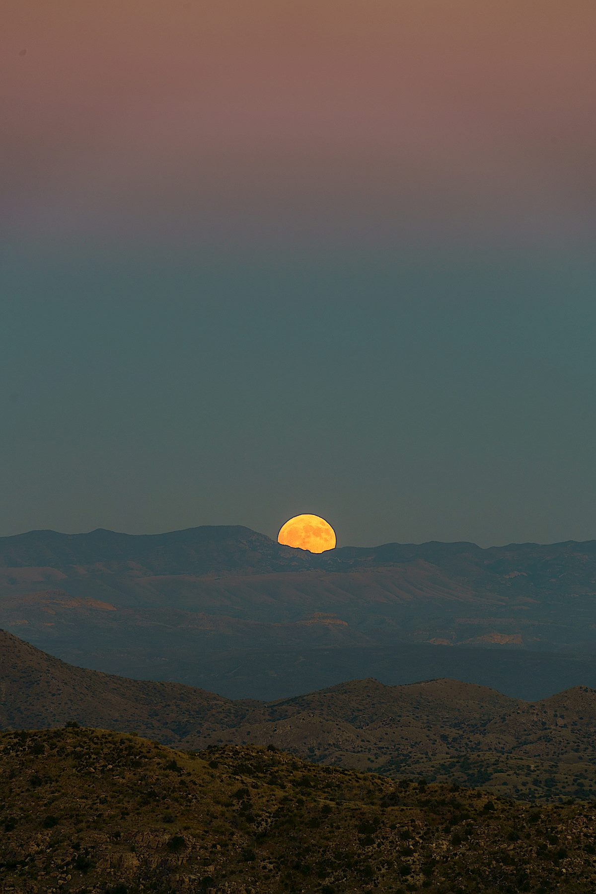 A Hunter's Moon rising over the Galiuro Mountains from just off the Bellota Trail on the ridge above Molino Basin. October 2016