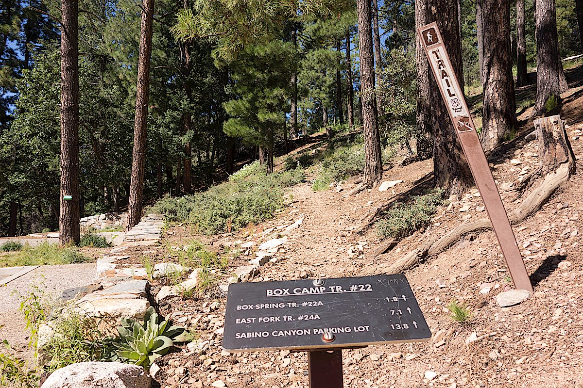 Small trail sign at the start of the Box Camp Trail at the Box Camp Trailhead. September 2014