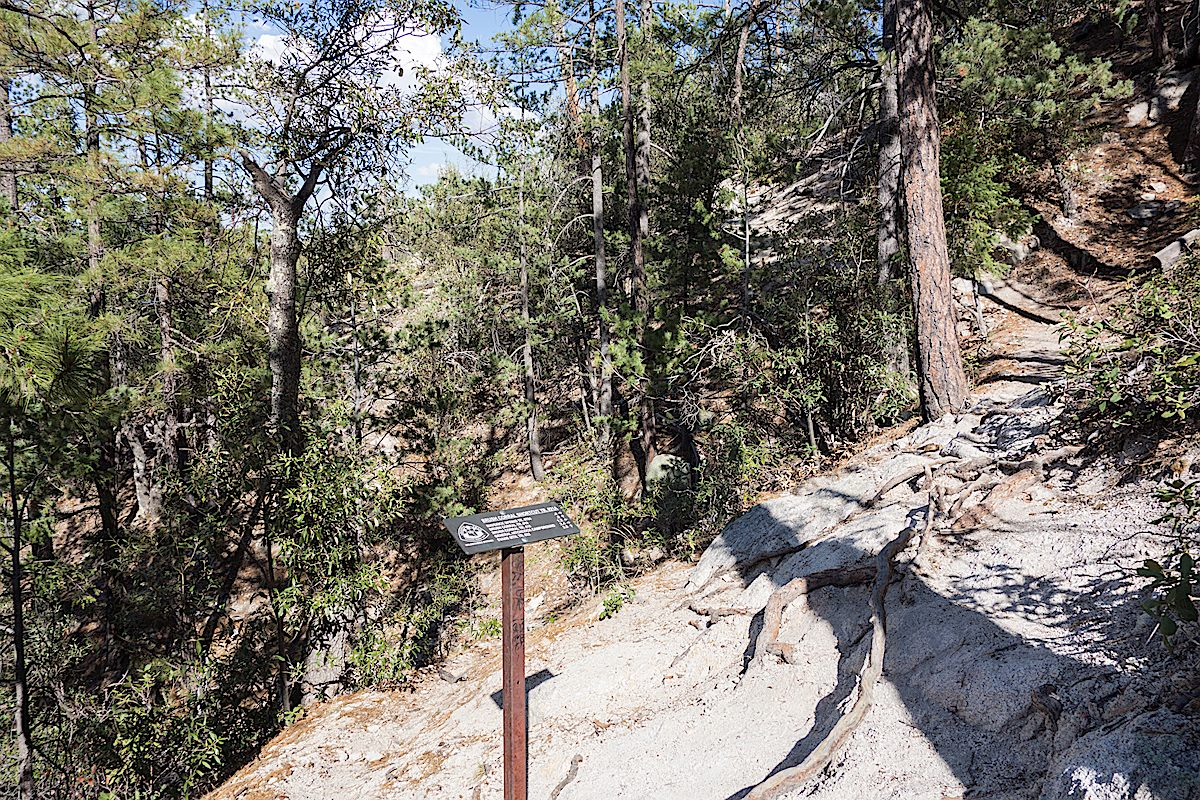 Upper Green Mountain and Brush Corral Shortcut Trail junction. July 2014