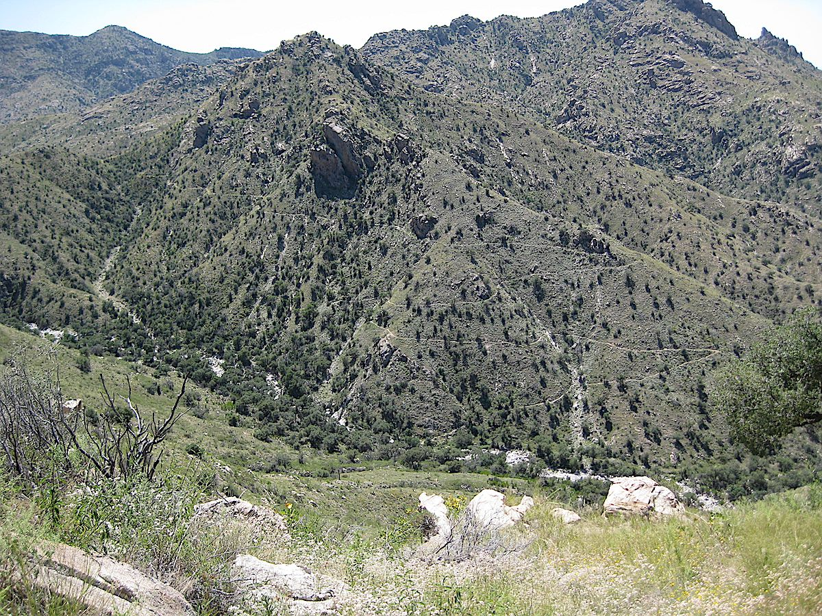 Switchbacks on the East Fork Trail. September 2008.