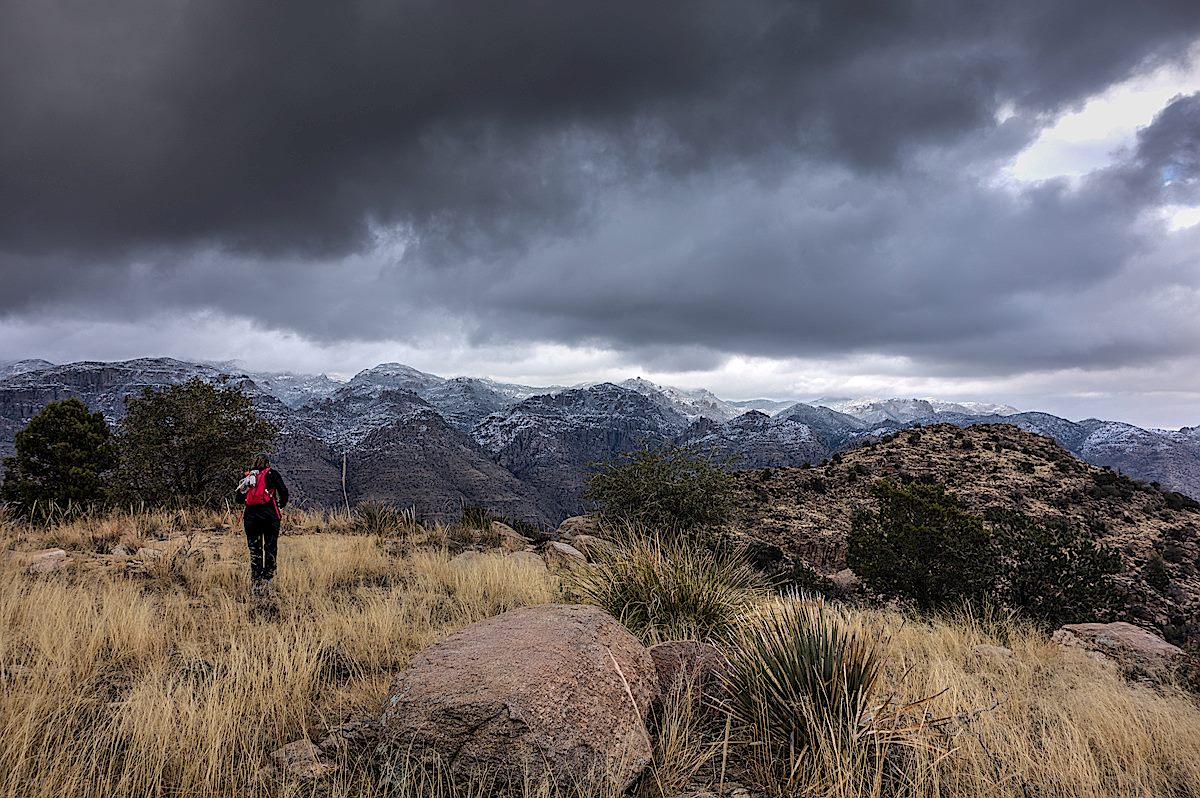 From the South Summit of Gibbon Mountain looking into the snow covered Santa Catalina Mountains. December 2013.