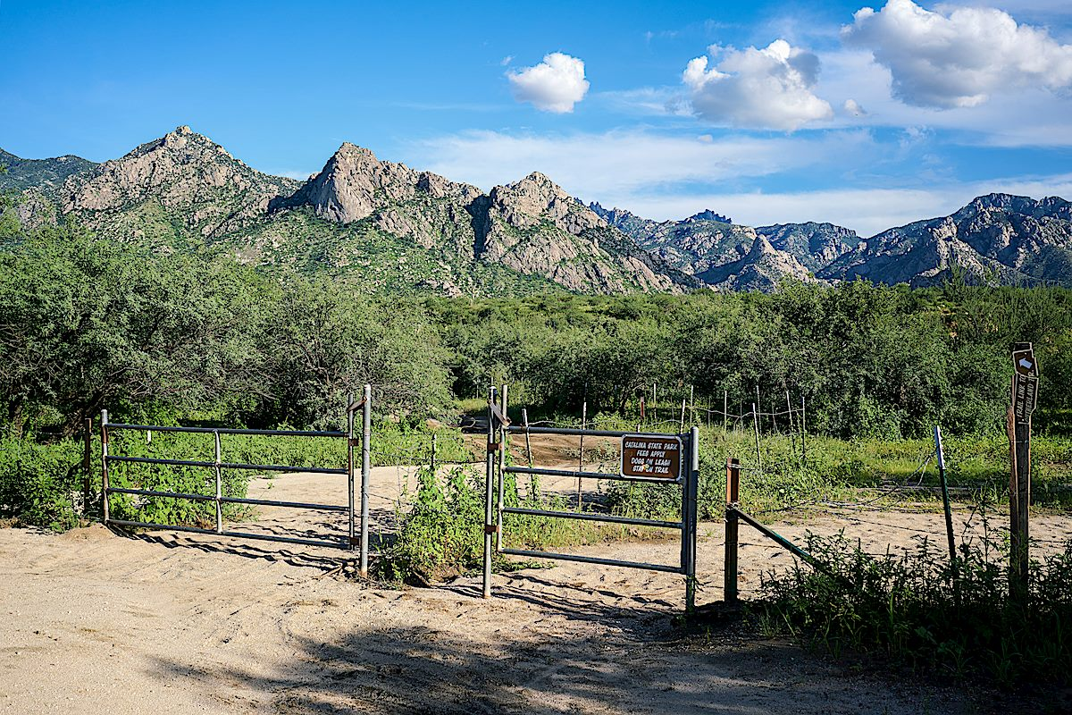 Two gates leaving the Golder Ranch Trailhead - the gate to the left leads into Catalina State Park (a fee area) and to the left the Trail Link trail follows FR643 towards the Sutherland Trail. August 2017.