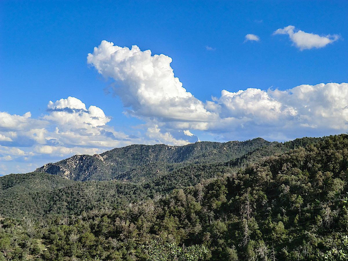 Guthrie Mountain on the right - from the Knagge Trail. Pre-Burro Fire. September 2013.