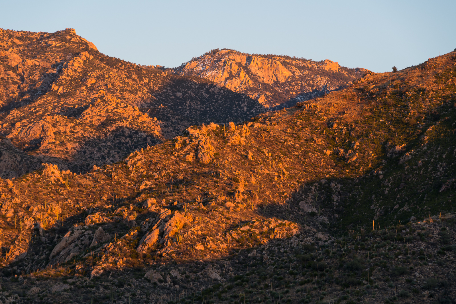 Sunset light in Catalina State Park. January 2016.