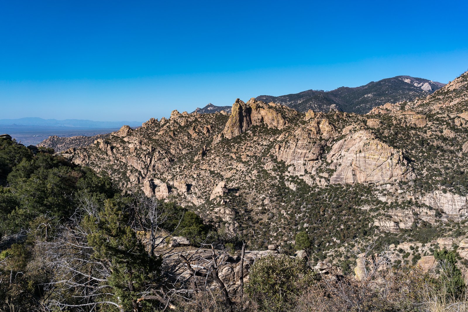 A view from Mount Lemmon  on the right to the Biosphere on the left - from the Esperero Trail between The Window and the junction with the Finger Rock and Ventana Trails. March 2016.
