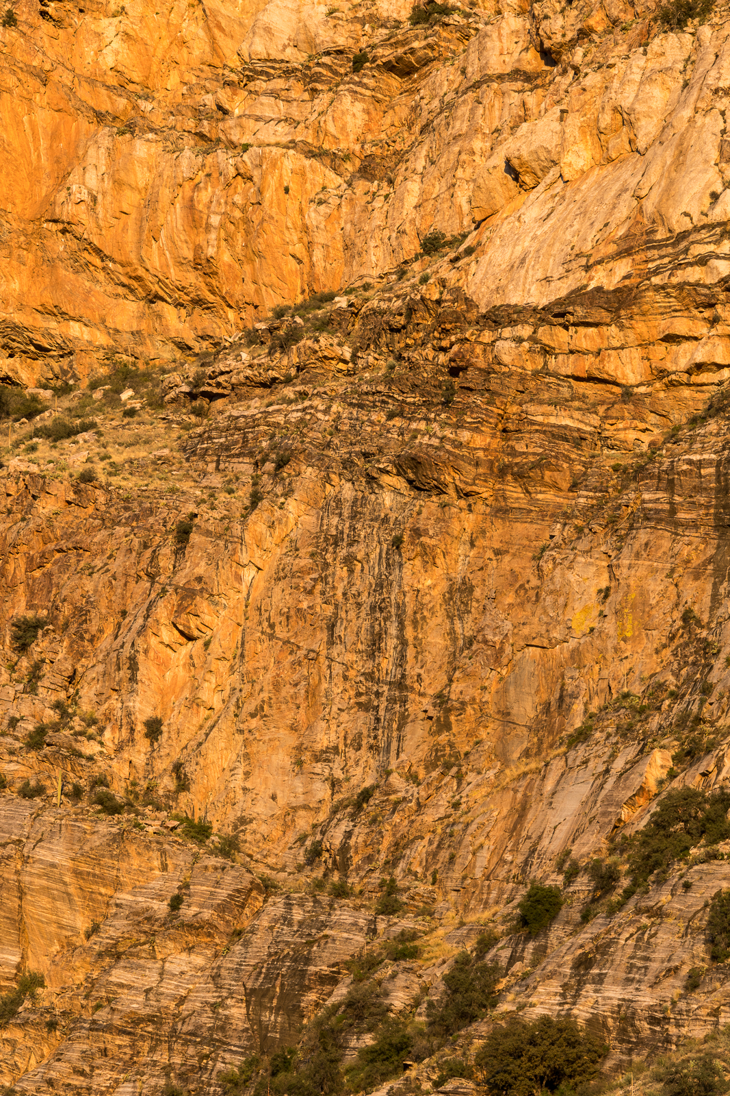 A section of the Pontatoc Ridge Cliffs. March 2016.