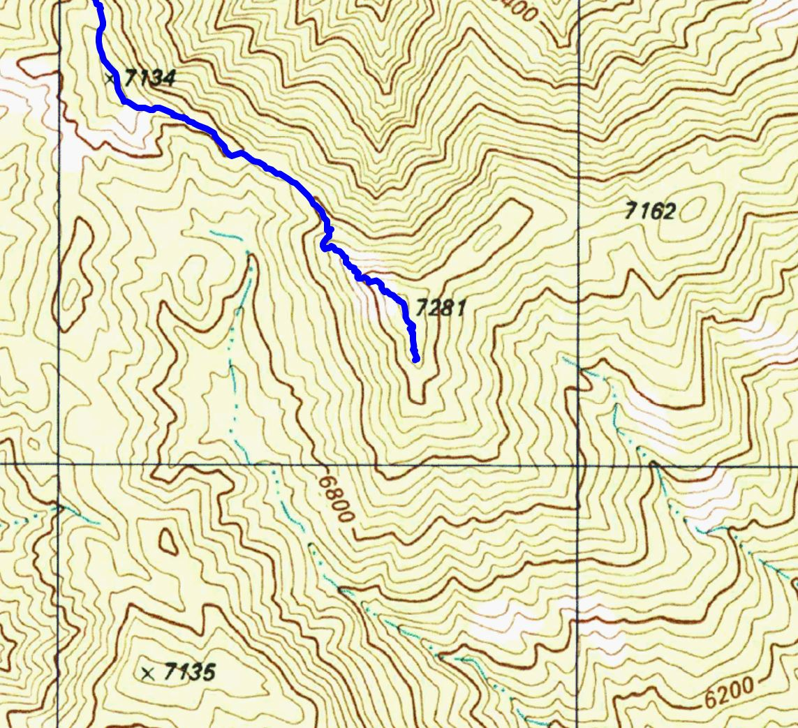 The end of the Guthrie Mountain Trail shown on the USGS 7.5' topo map - note that this point is not labeled 'Guthrie Mountain'.