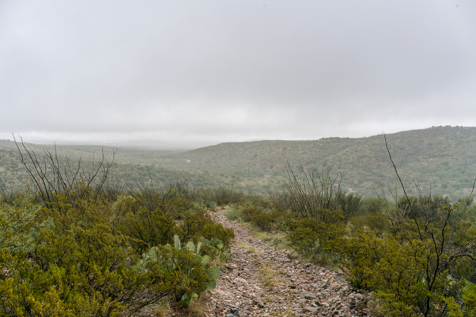 The road across the Mesa descends towards Mesa Well and off into the clouds. September 2016.