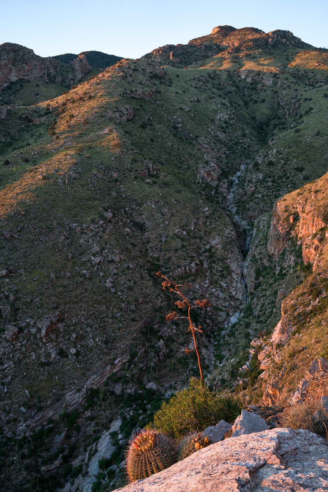 Pontatoc Canyon in shadow at sunset from the end of the Pontatoc Ridge Trail. September 2016.