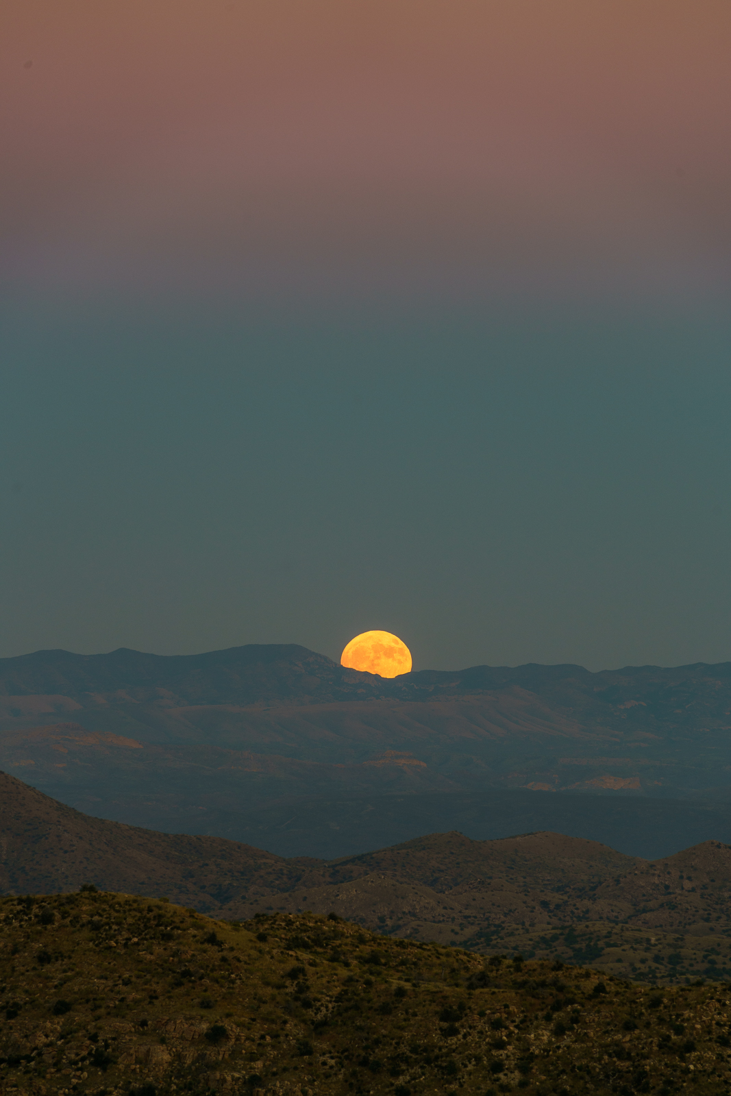 A Hunter's Moon rising behind the Winchester Mountains - taken near the Bellota Trail. October 2016.