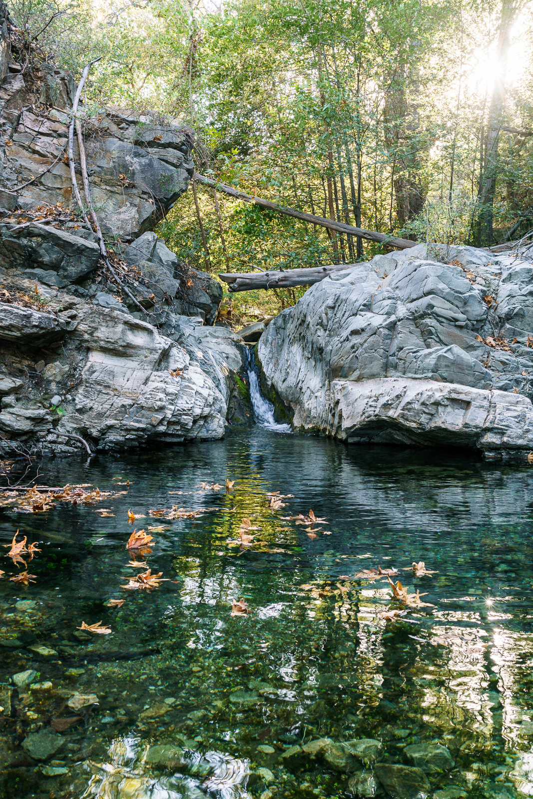 Pool in Alder Canyon. October 2016.