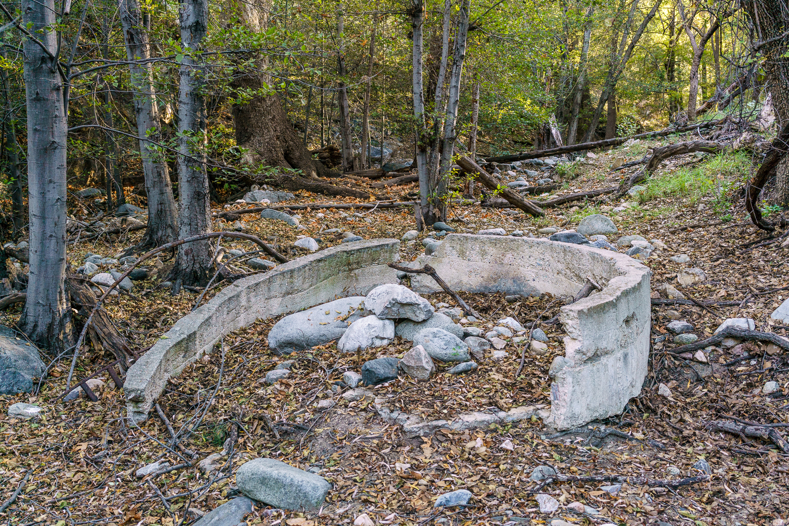 Water trough in Alder Canyon near Juan Spring. October 2016.