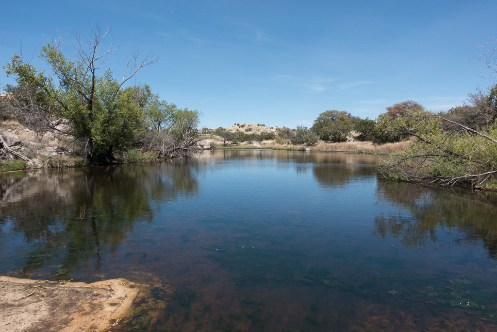 The Lake - this pool of water is just off the Arizona Trail (Bellota Trail) near 'The Lake' Trailhead on FR36. March 2017.