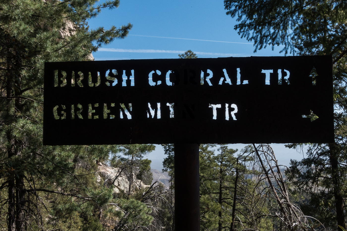 At the junction of the Brush Corral and Green Mountain Trails. April 2017.