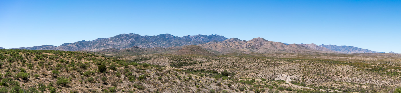 A view of the Santa Catalina Mountains from FR4407 Brush Corral Road. April 2017.