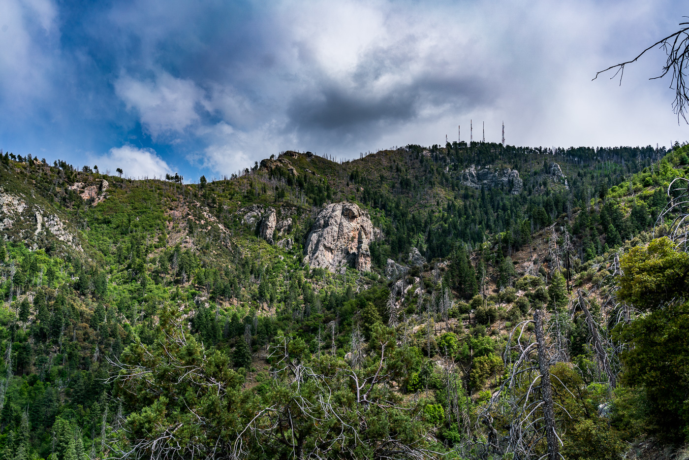 Mount Bigelow and the Butterfly Wall from the Butterfly Trail. May 2017.