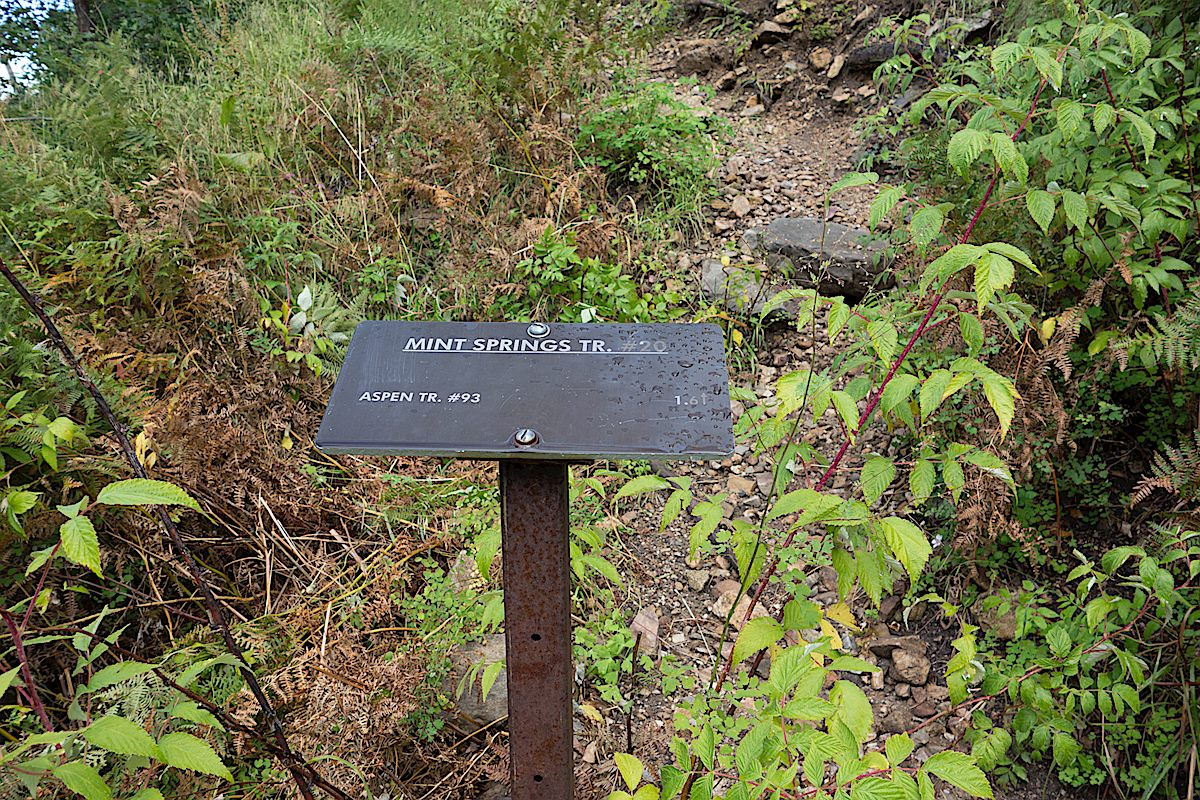 Small trail sign near the start of the trail. September 2014.