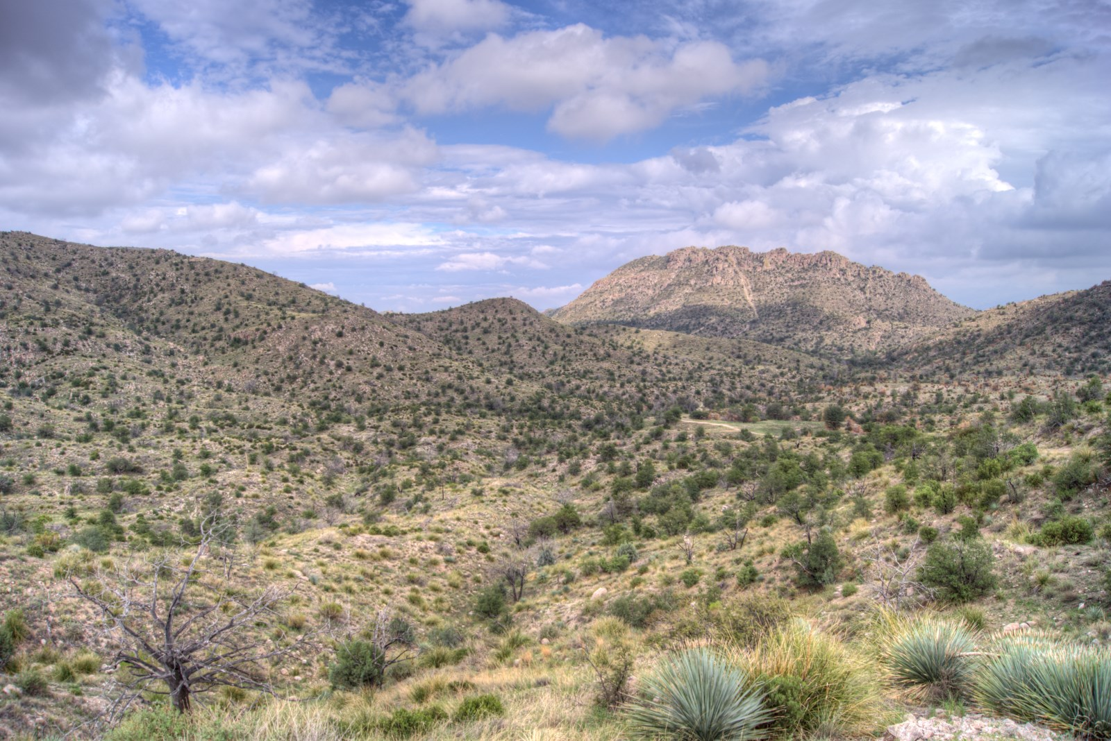 Looking towards Prison Camp from Shreve Saddle. August 2013.