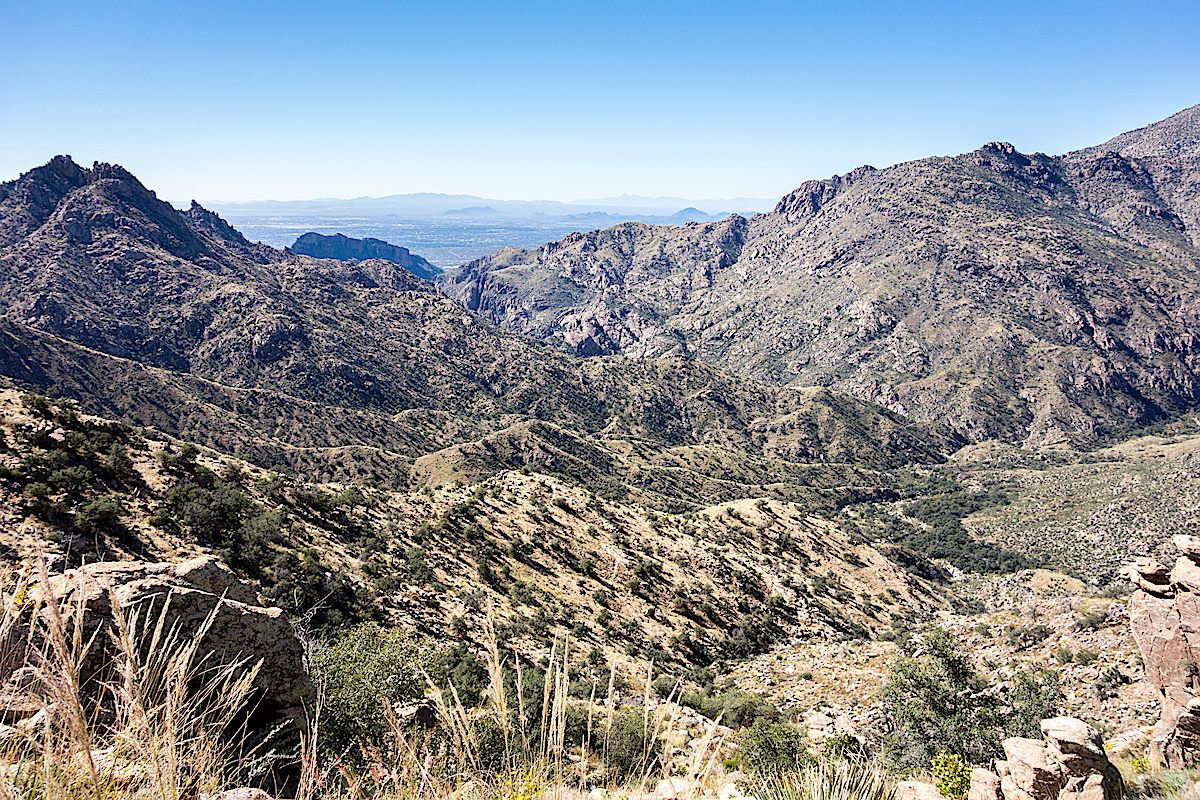 Looking at the Palisade Trail descending towards Sabino Canyon and it's junction with the East Fork Trail. October 2014