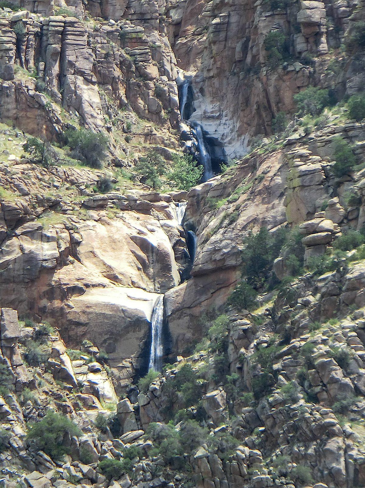 Water falls in Palisade Canyon - part of the amazing variety in the Pusch Ridge Wilderness. August 2013.
