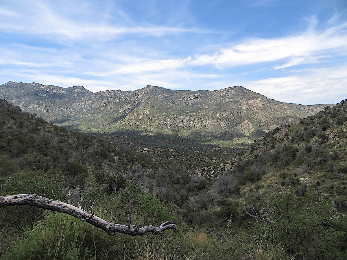 Looking down on the lower section of the trail that winds down to the CDO - Samaniego Ridge in the background. August 2013.