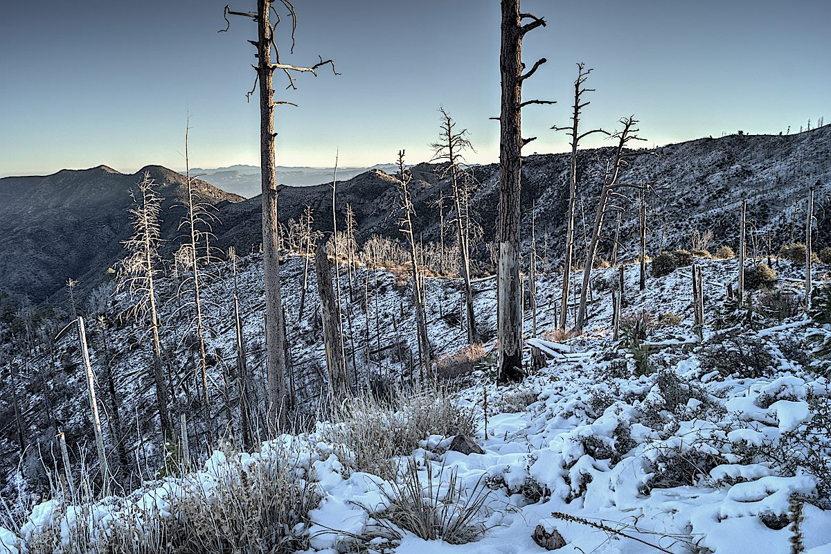 Coming back up the upper section of the ridge on a winter day with snow on the trail. December 2013.