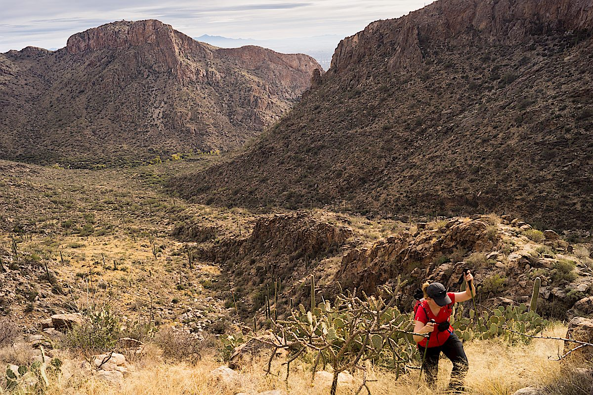 Hiking up to the Cleaver with the cliffs of Rosewood point across the canyon. November 2013.