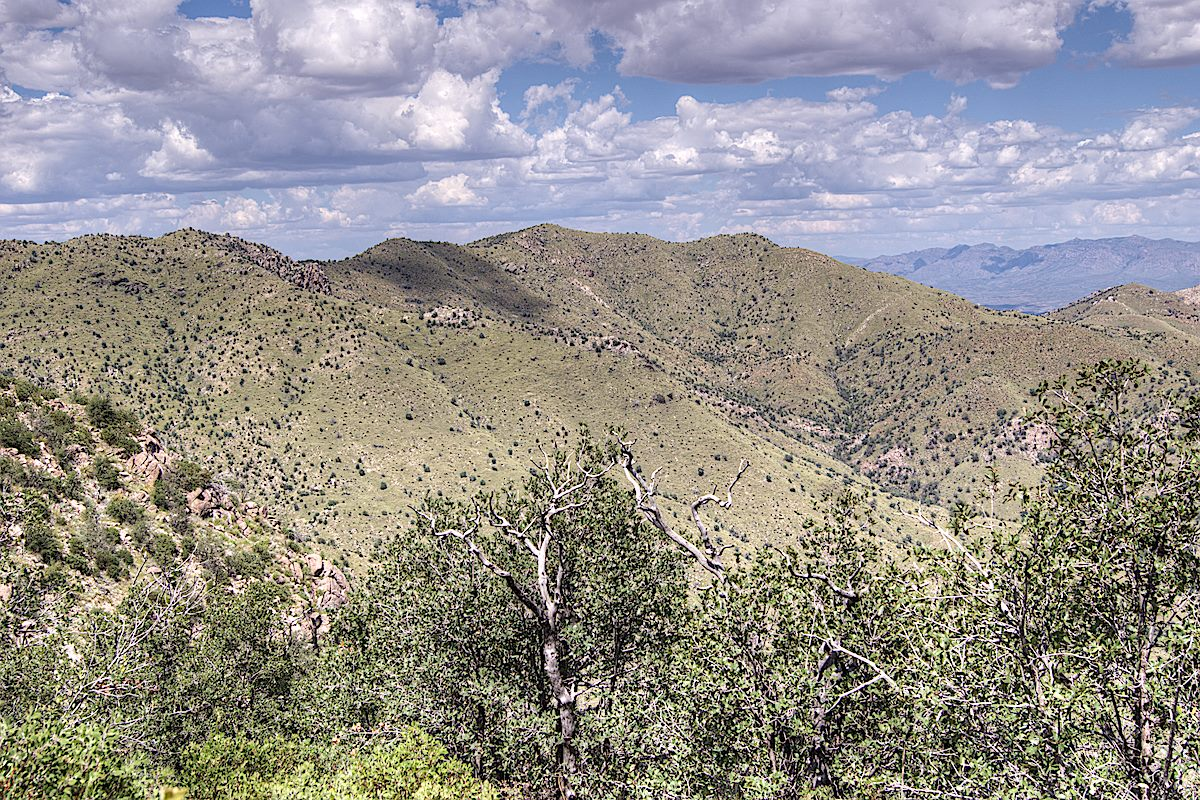 A view of part of the ridge pictured at the top of this page from 2013 - before the Burro Fire. September 2013.