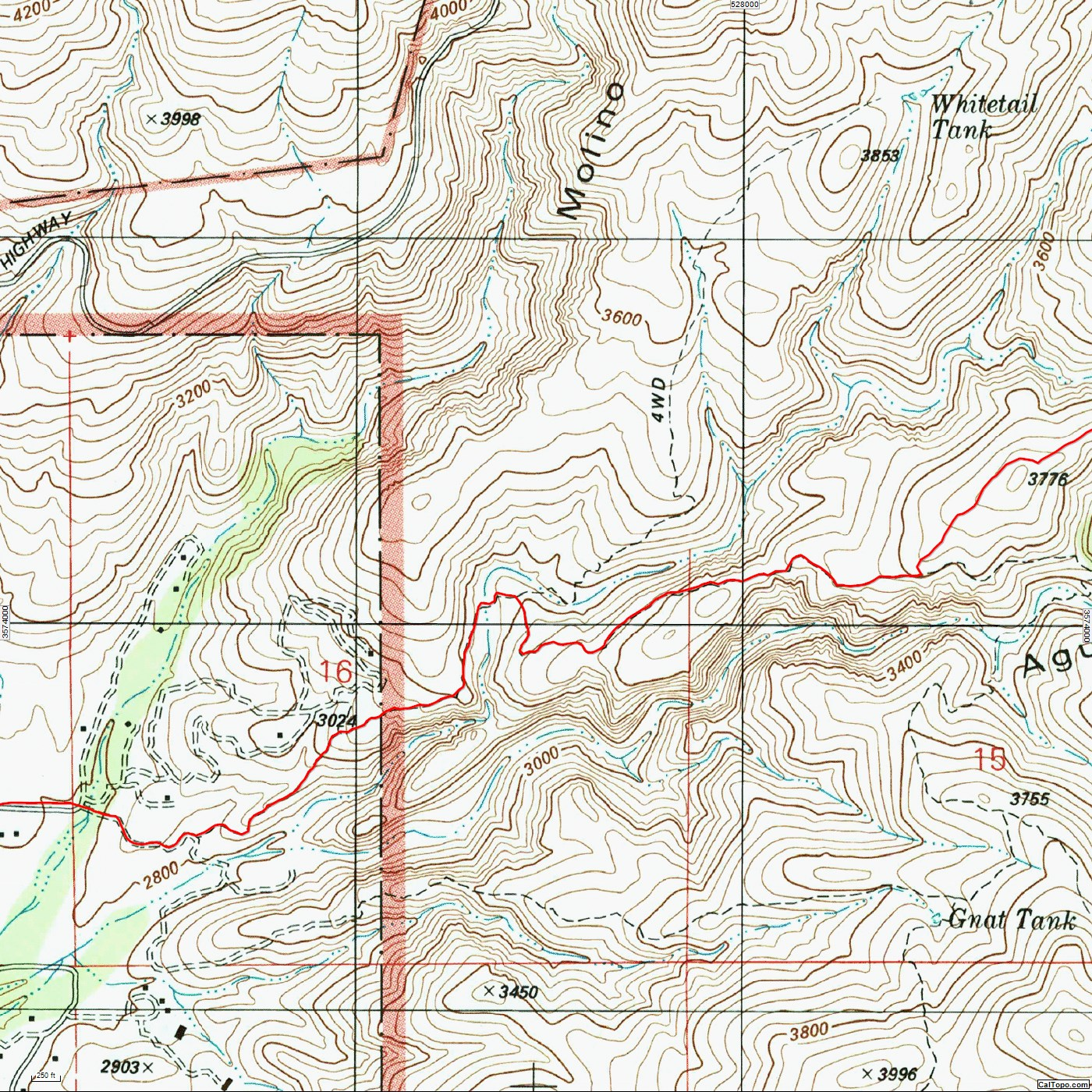 The La Milagrosa Trail in red - Horsehead Road (where the hike starts) on the left - Forest Road 4446 to Whitetail Tank (marked 4WD) breaks from the La Milagrosa Trail near La Milagrosa Canyon